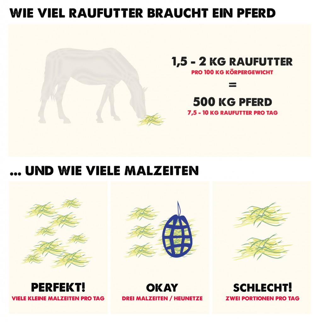 Raufutter-Pferd